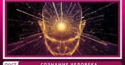 Сознание человека это в психологии? Сознание и мозг кратко! Свойства сознания личности!