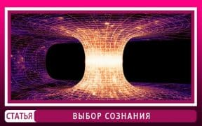 Сознание человека и квантовая физика. Эверетт Хью.
