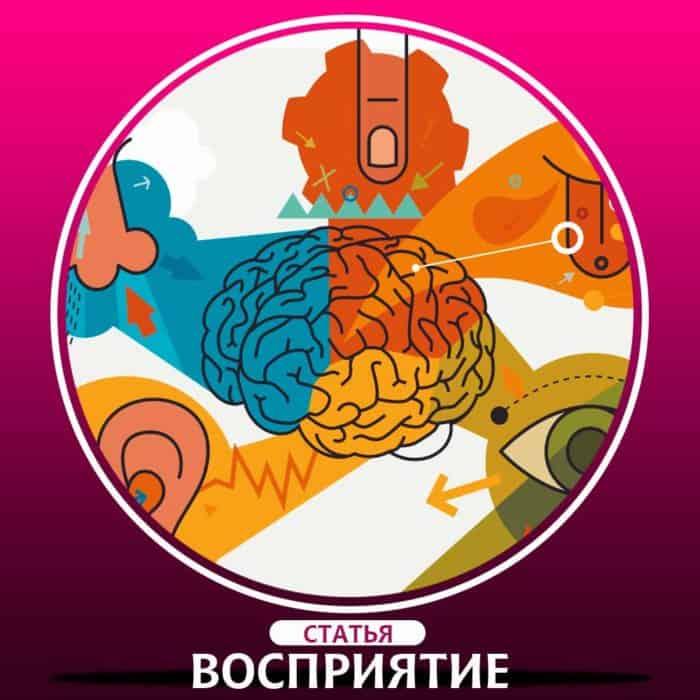 Восприятие в психологии это, определение? Признаки восприятия.