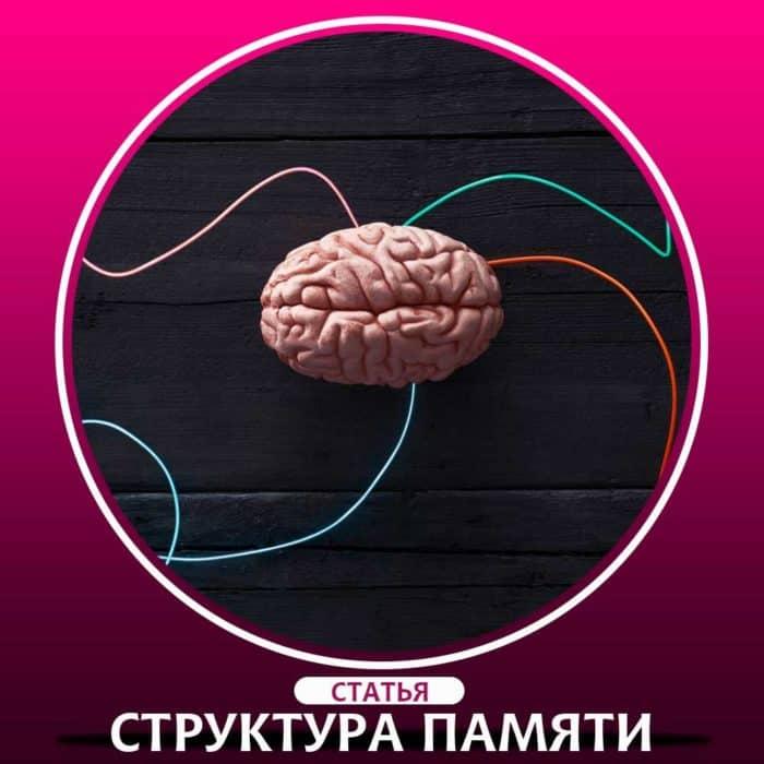 Структура памяти в психологии. Долговременная память человека это.